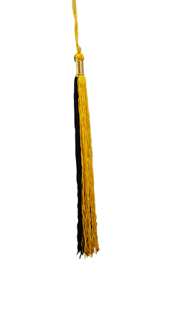Gold and Black Graduation Tassel Picture